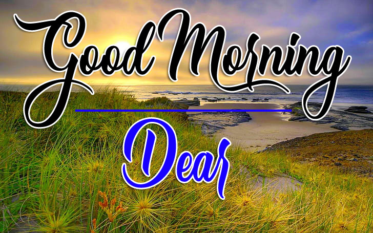 Free Good Morning Images Photo