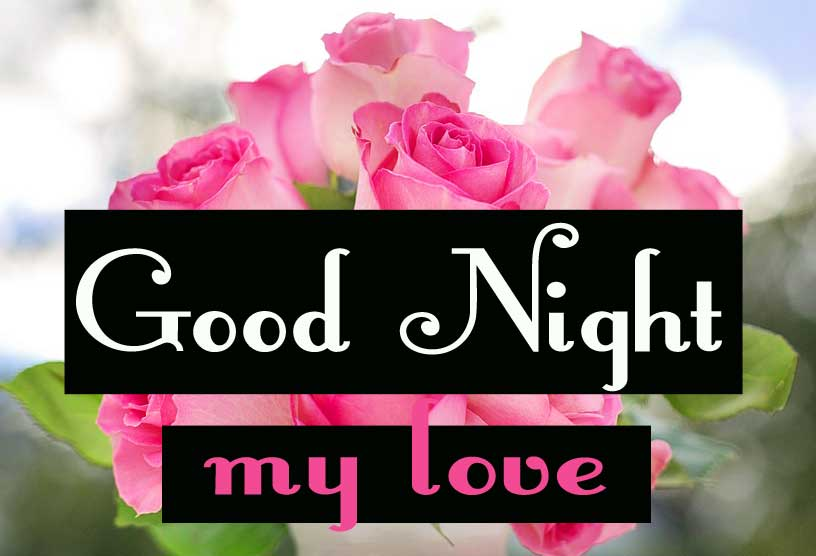 Free Free good night Images Wallpaper Download With Rose