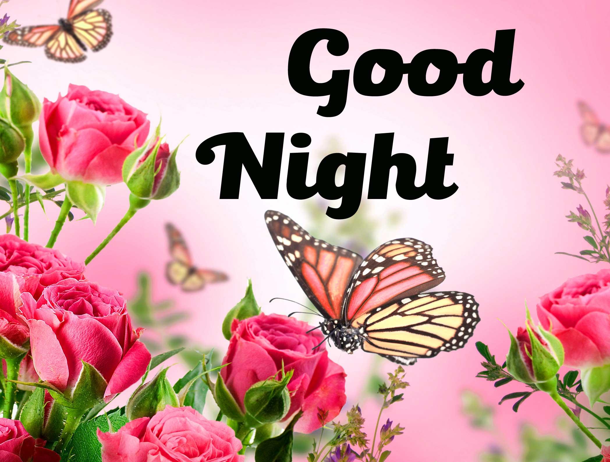 Free good night Images 4