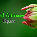 Good Afternoon Images 10