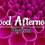 Good Afternoon Images 100