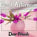 Good Afternoon Images 15