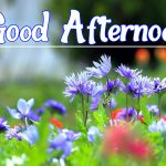 Good Afternoon Images 19