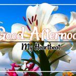 Good Afternoon Images 27