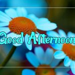 Good Afternoon Images 48
