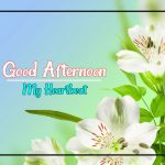 Good Afternoon Images 60
