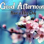 Good Afternoon Images 62