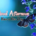 Good Afternoon Images 63