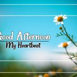 Good Afternoon Images 78