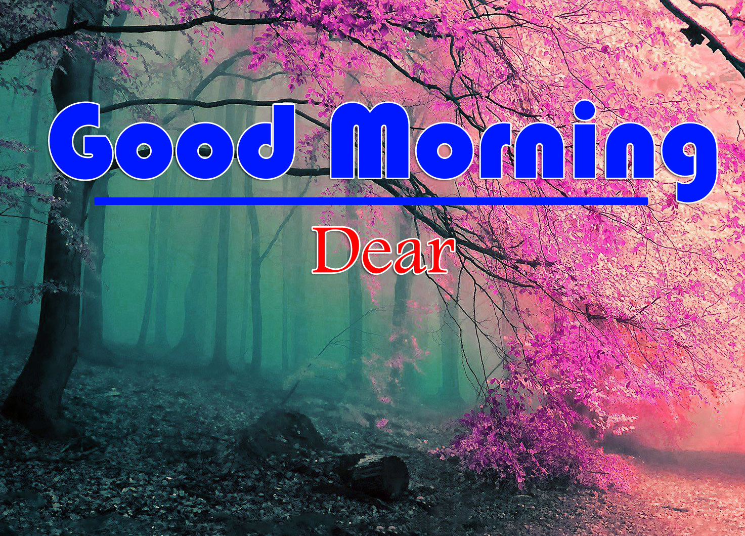 Good Morning SMS Message Images 1
