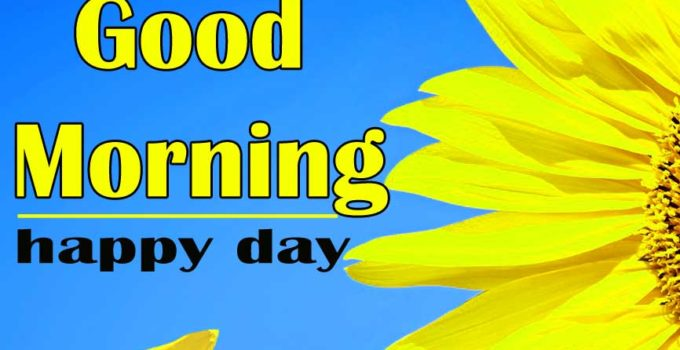 Good Morning Sunflower Images 10
