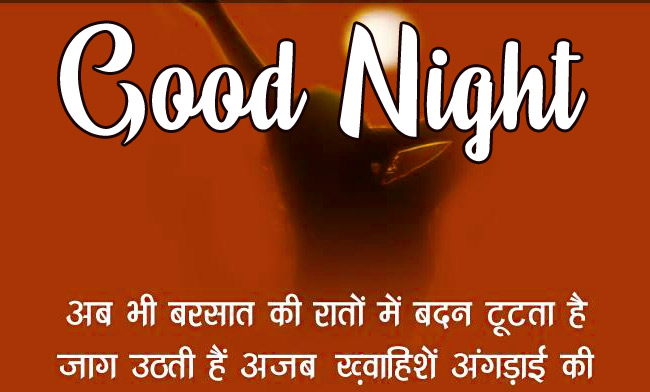 Good Night Images With Hindi Shayari 18