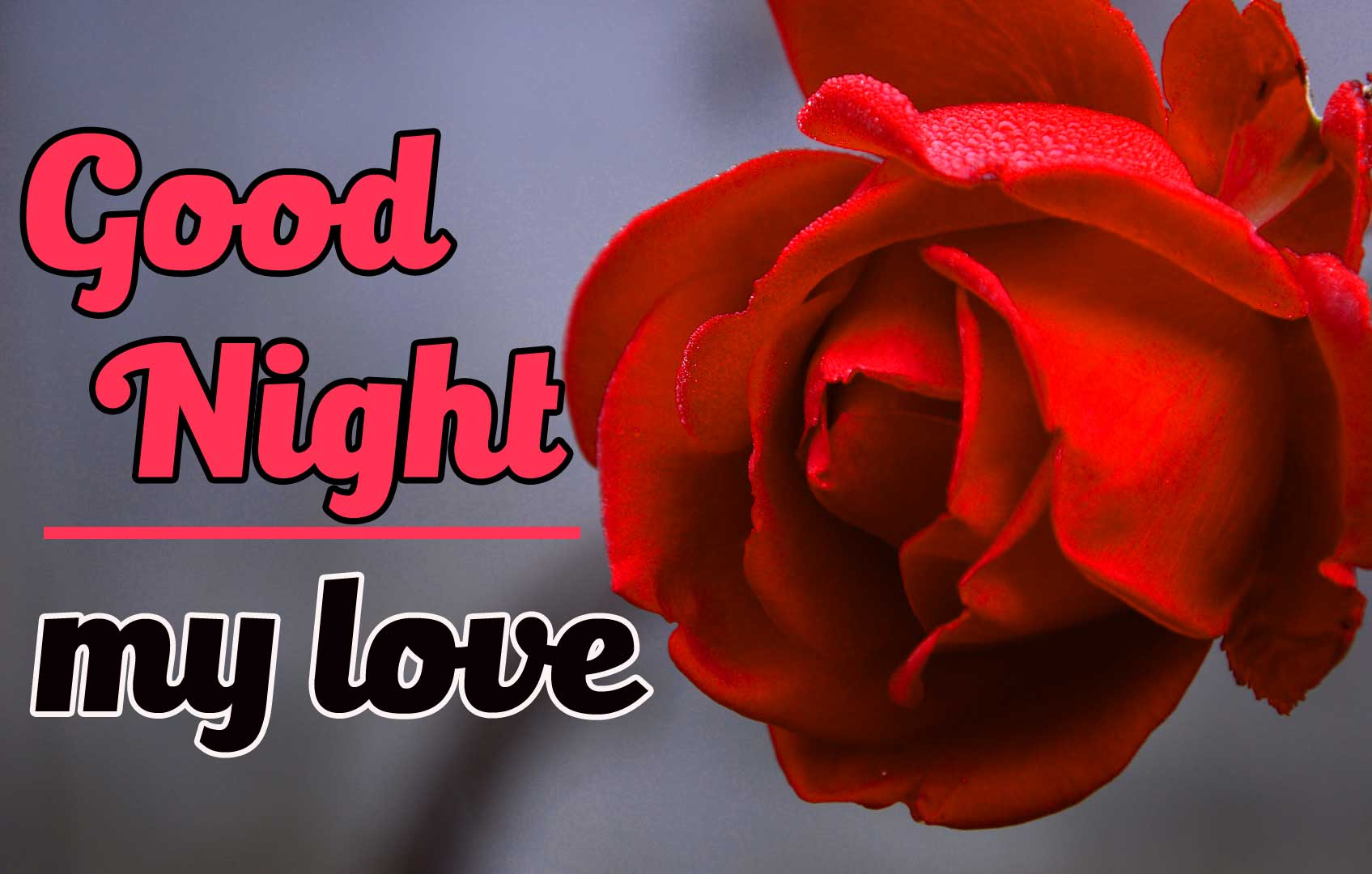 Rose Free Good Night Images for friend Pics Download