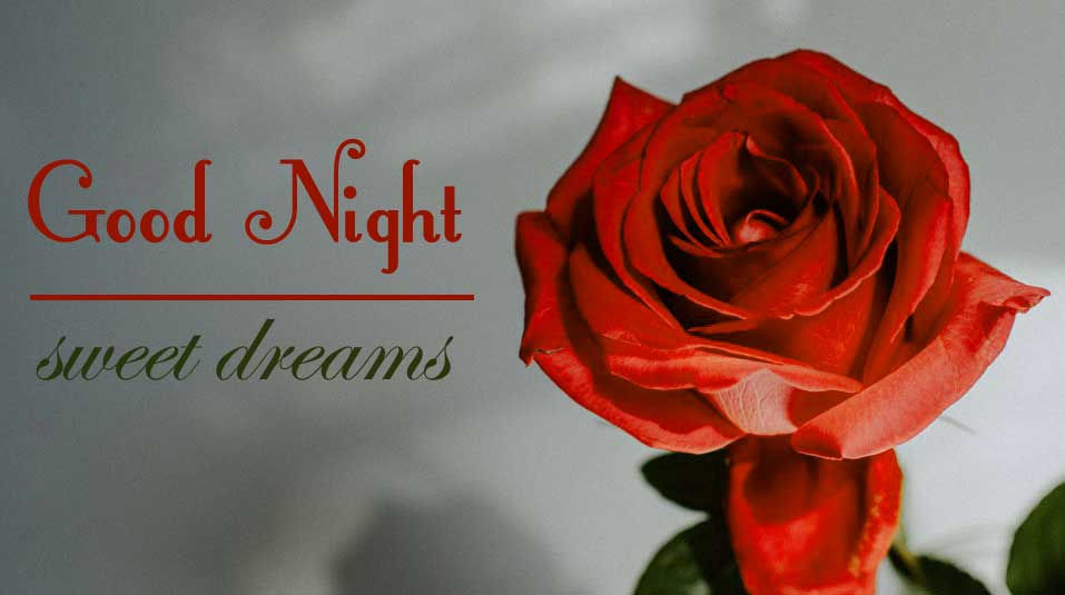 Good Night Images for friend Photo With Red Rose
