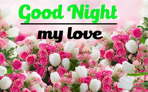New Free Beautiful Good Night Pics Download