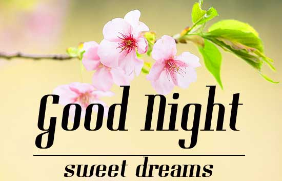 Good Night Wallpaper 20 1