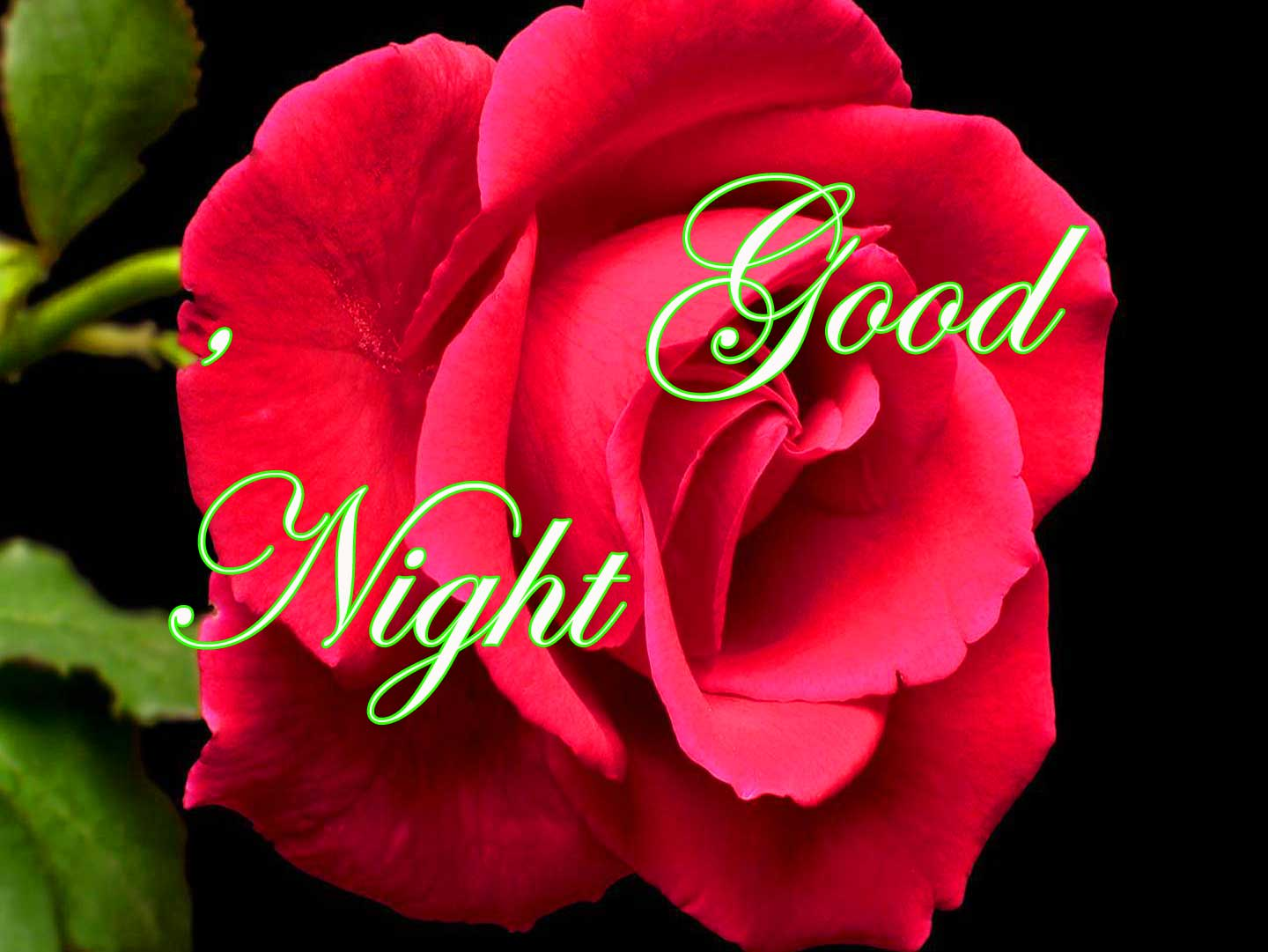 For Mobile Good Night Wallpaper pics With Flower