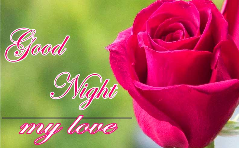 Rose Beautiful Good Night Images Wishes With Rose