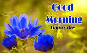 Free Love Good Morning Wishes Wallpaper