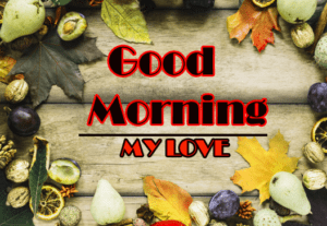 Love Good Morning Wishes Photo Download