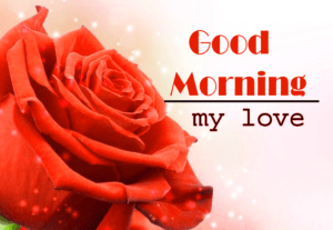 Rose Sweet Love Good Morning Wishes Images Download