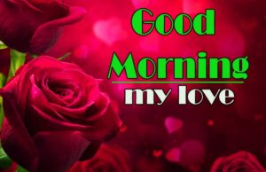 Best Sweet Love Good Morning Wishes Photo Dowload