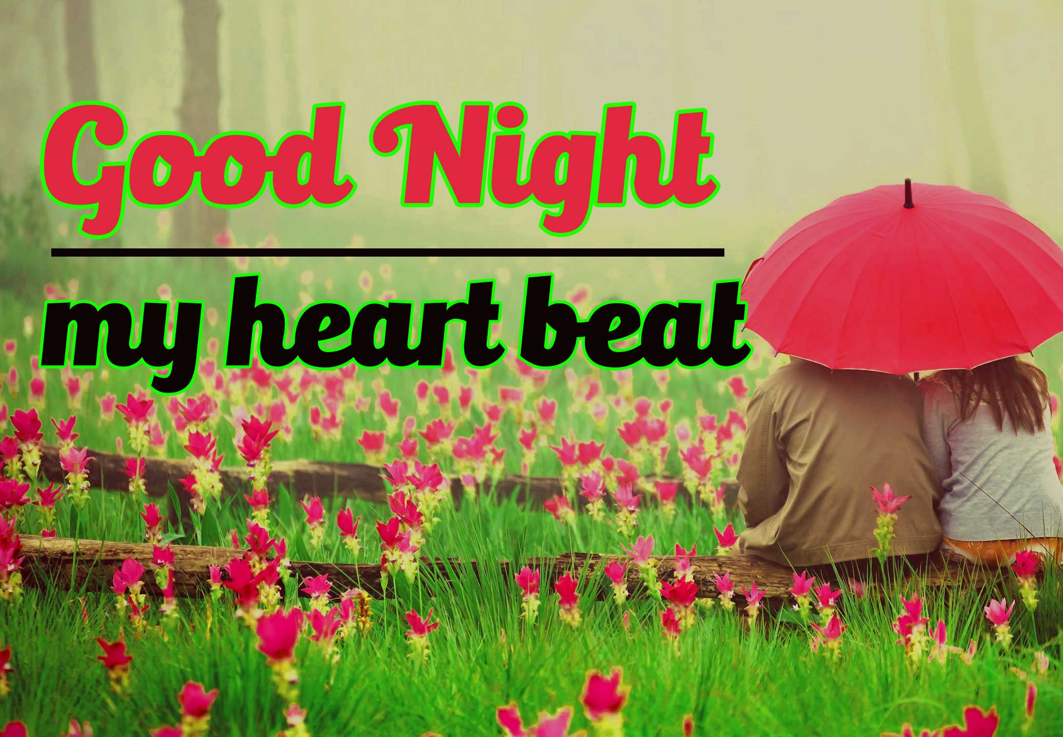 Most Beautiful Good Night Pictures Download