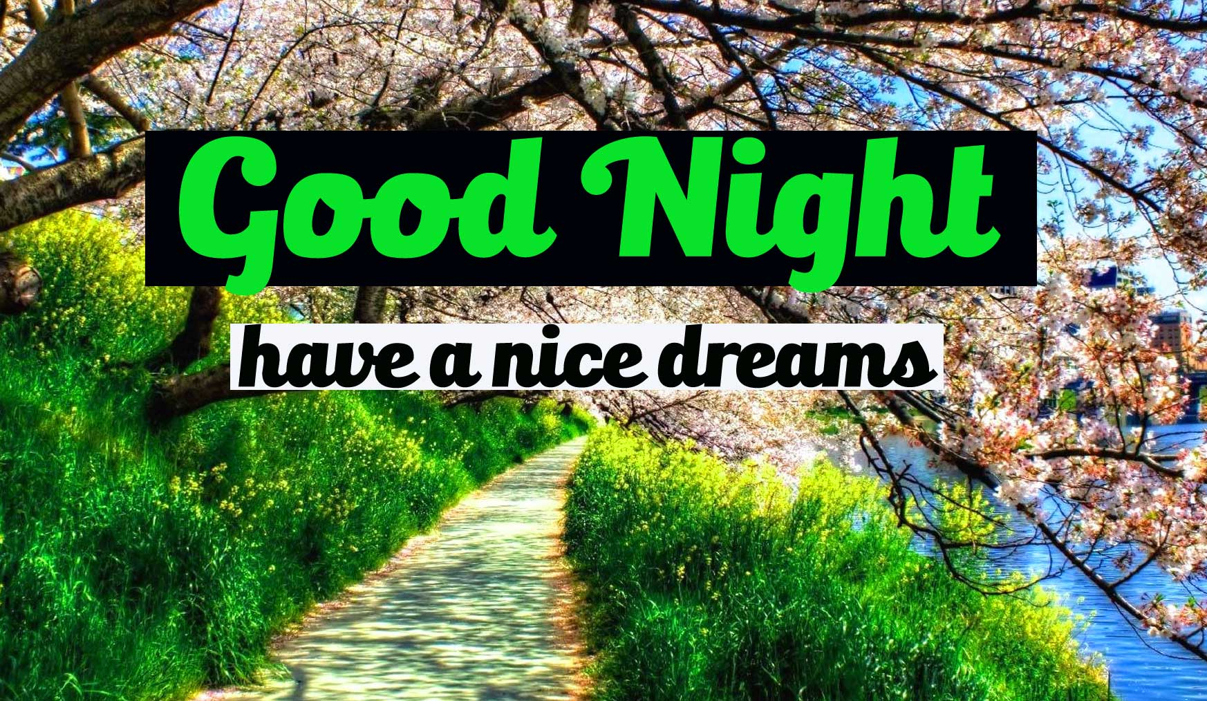 Most Beautiful Good Night Pictures Free