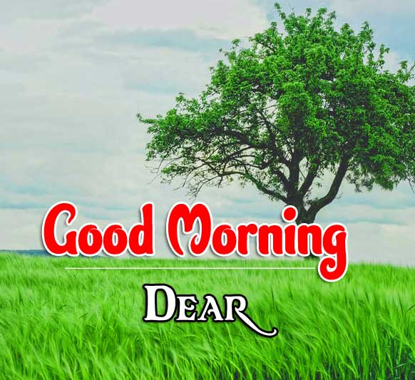 Nature Good Morning Images 2