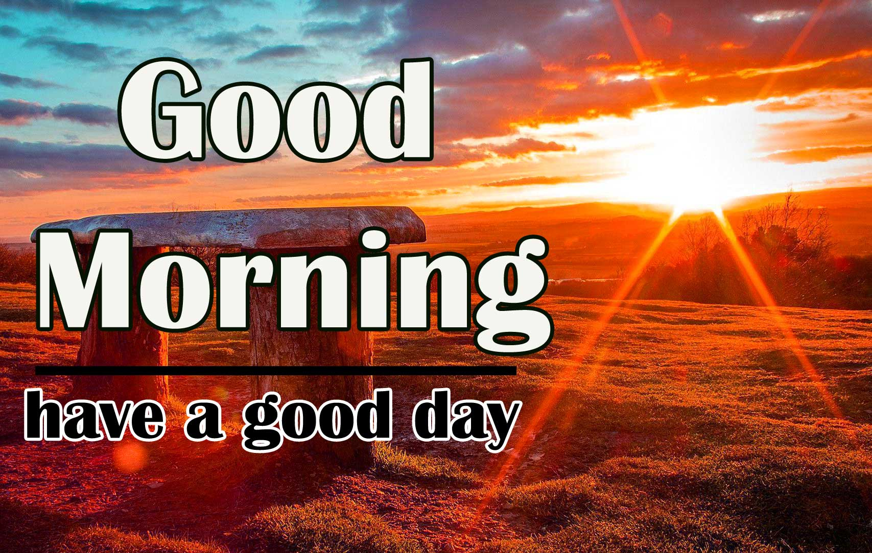 Top Quality Free Sunshine Good Morning Wishes Images Pics Download