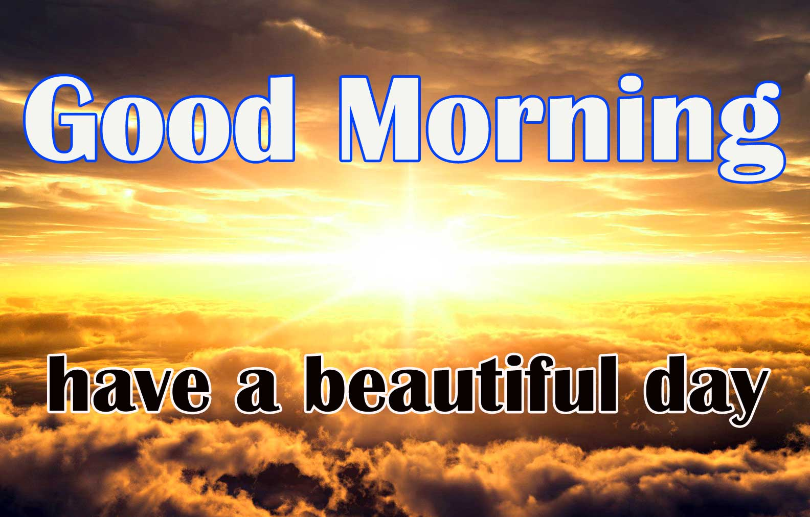 Sunshine Good Morning Wishes Images Pics Download