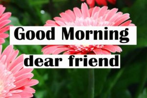 friend good morning Images 12