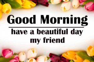 friend good morning Images 14