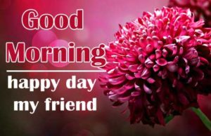 friend good morning Images 15