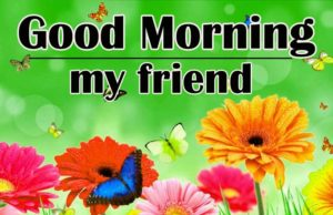 friend good morning Images 2