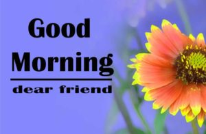 friend good morning Images 20