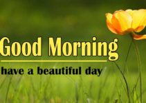 Latest Good Morning Images For Whatsapp Free Download
