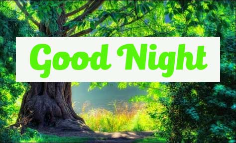 good night Wallpaper HD 21