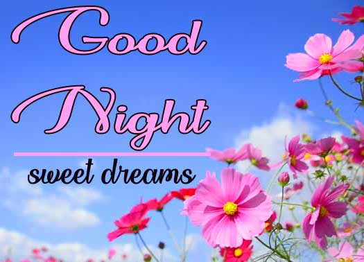 Latest Sweet Beautiful good night images Pics With Flower