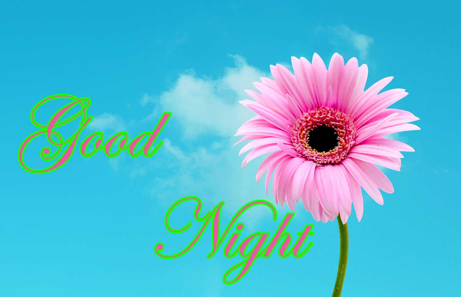 Free good night pics for Facebook
