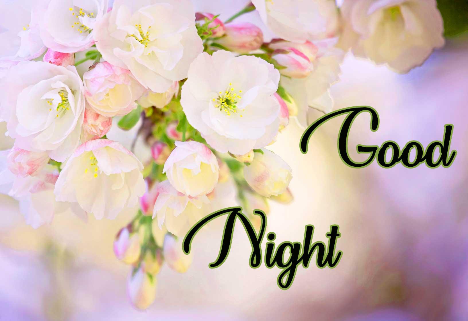 good night pics Download 2