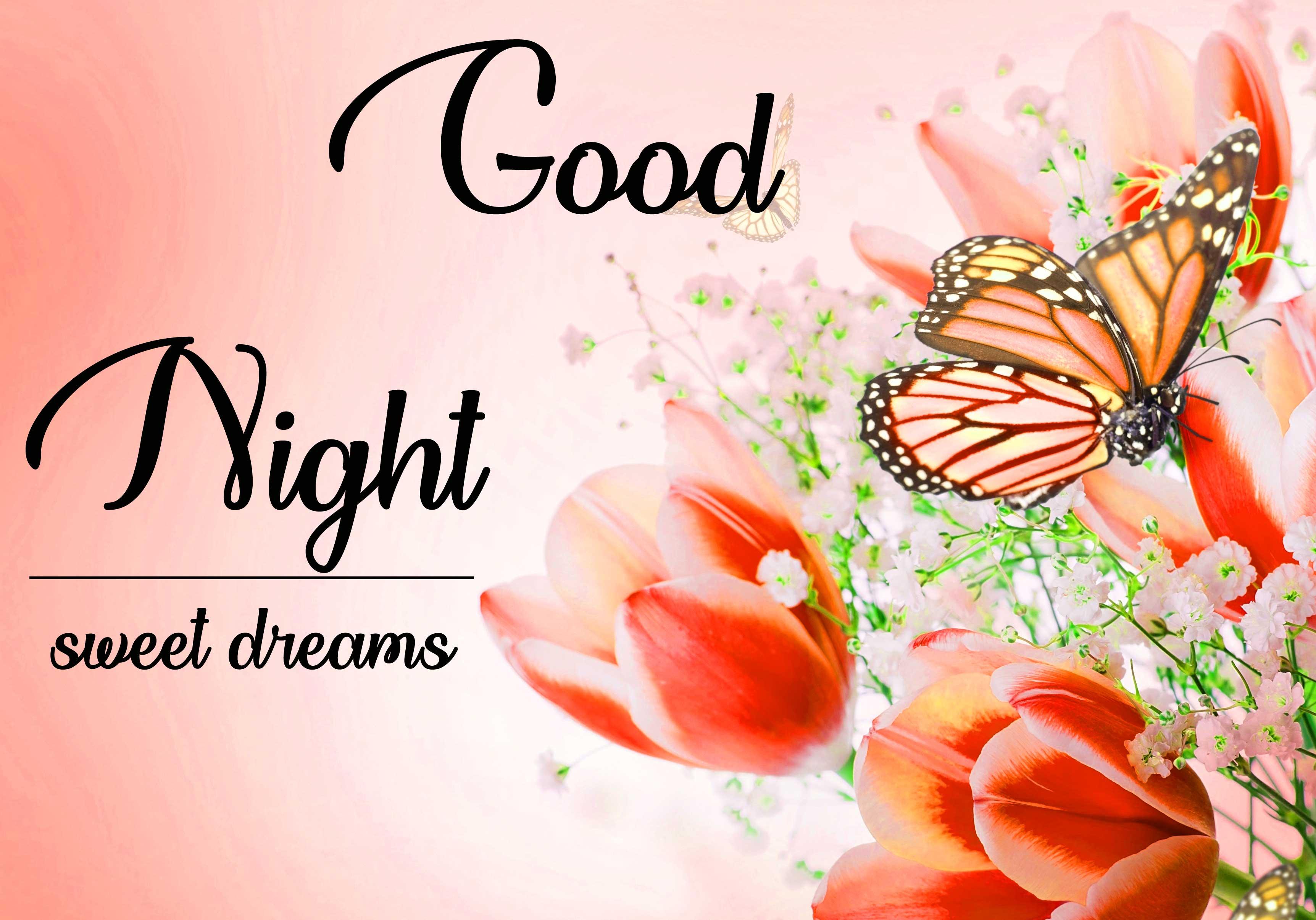 good night pics Download 4