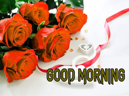 Beautiful Good Morning 14