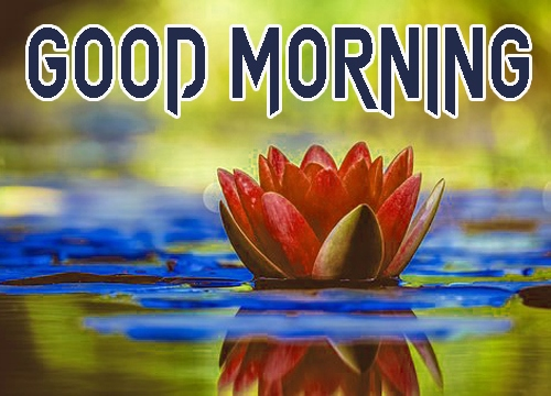 Beautiful Good Morning 23