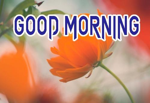 Beautiful Good Morning 24