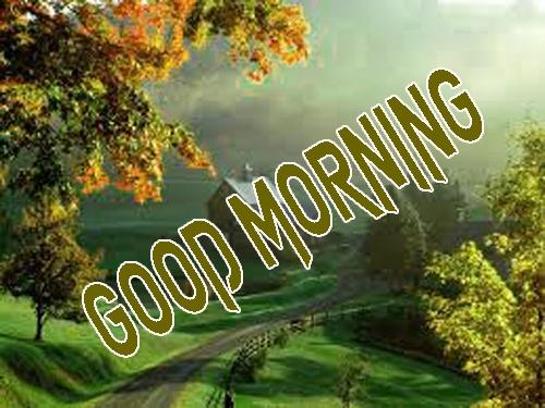 Beautiful Good Morning 3