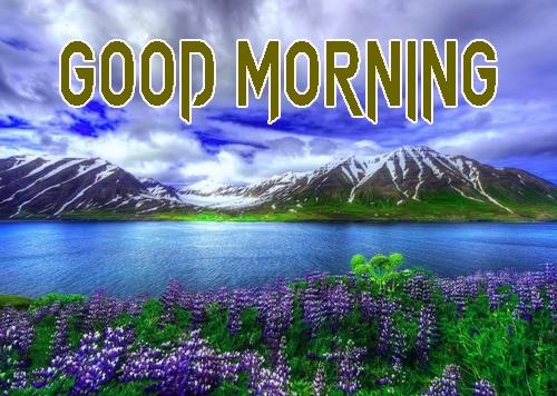 Beautiful Good Morning 8