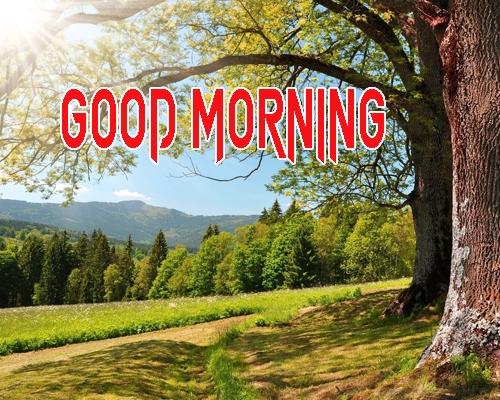 Beautiful Good Morning 9