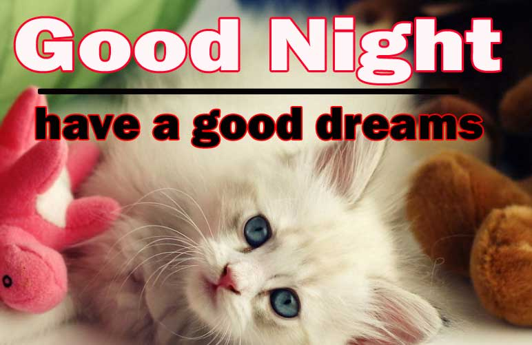 Cute Good Night Wallpaper Download 12