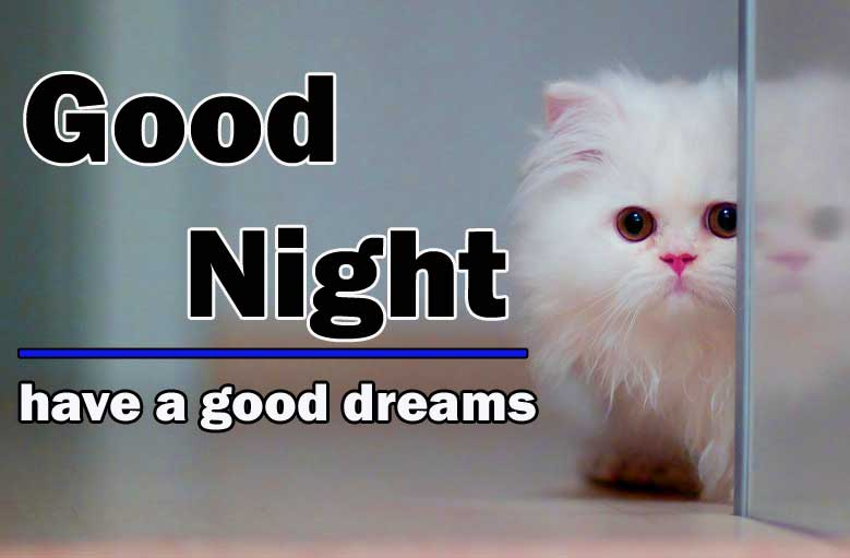 Cute Good Night Wallpaper Download 3